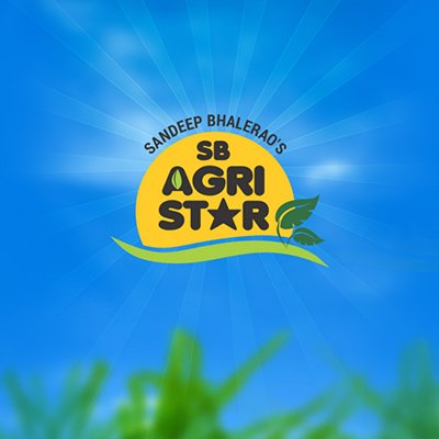 Agri Star Logo by Pixel and Curve
